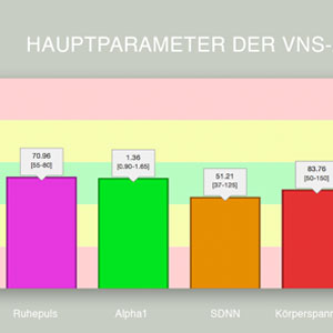 VNS-Analyse